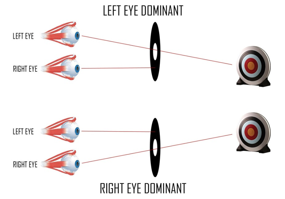 Eye dominance.jpeg